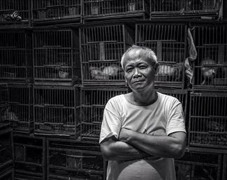 Bird Traders of Jakarta