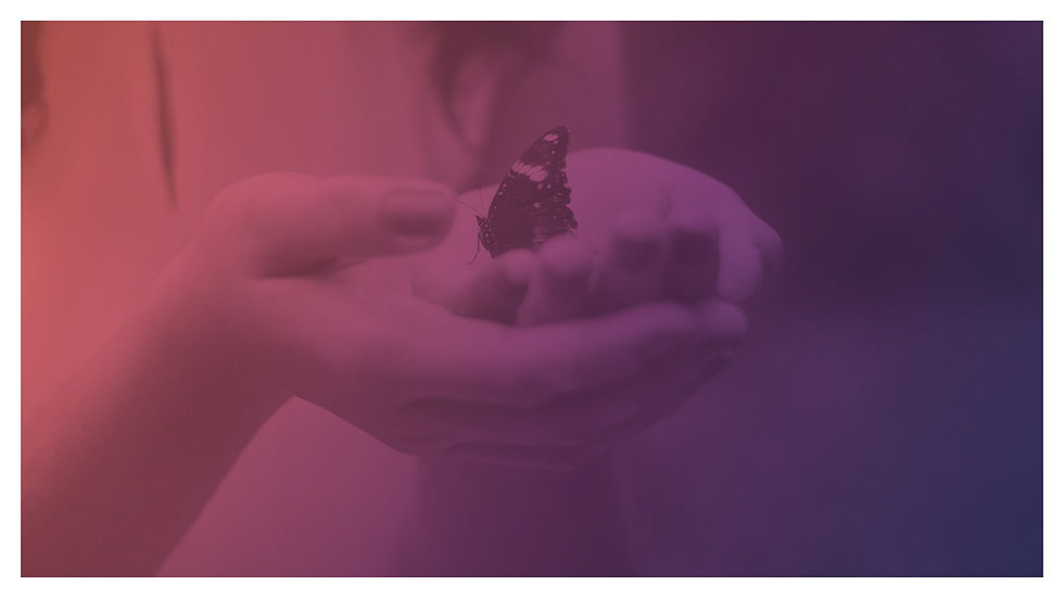 good-karma-butterfly-2_edited.jpg