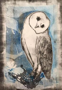 OWL201804.jpg