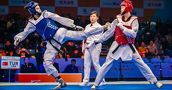 Elite Taekwondo Picture.jpeg