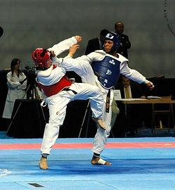 Axe Kick 2005.jpg