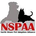 NSPAA Member Logo_2.jpg