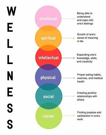 Wellness areas.jpg