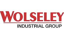 Wolseley Industrial Group logo