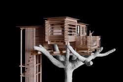 Modello di casa sull'albero