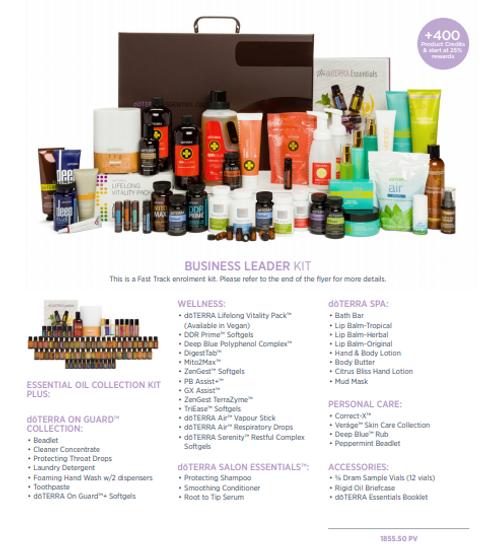 business leader kit.PNG