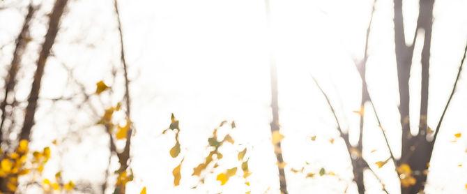 Tatiana-6_edited.jpg