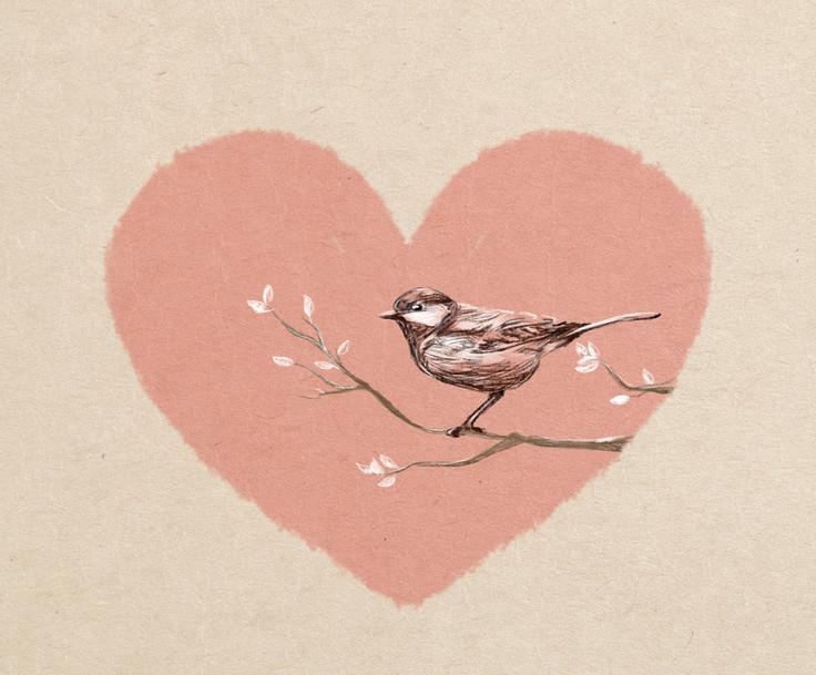 יש לי ציפור קטנה בלב.jpg
