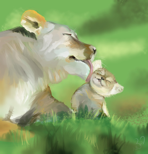 אריות.jpg