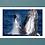 Thumbnail: ザトウクジラのブリーチング(0147031501_0266)