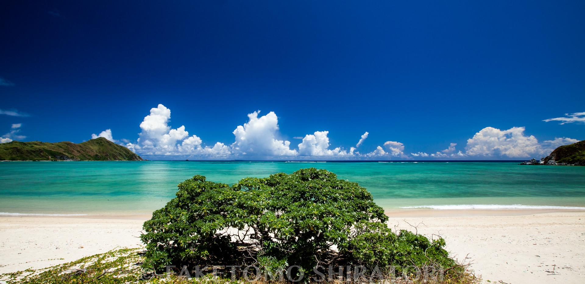 ハマスーキのある浜辺(渡名喜島)