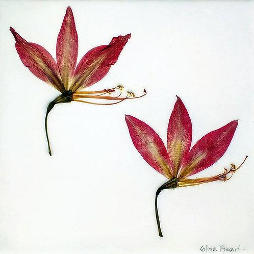 Painel Botânico Lírios - 25023