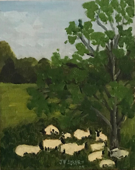 Cold Springs Sheep