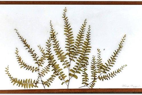 Painel Botânico Moldura Fina Floresta - 430021