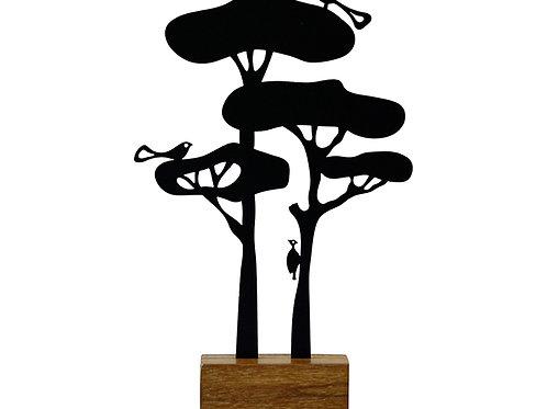 árvore araucária
