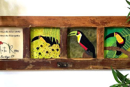 Janeladro - Quadro Tucanos