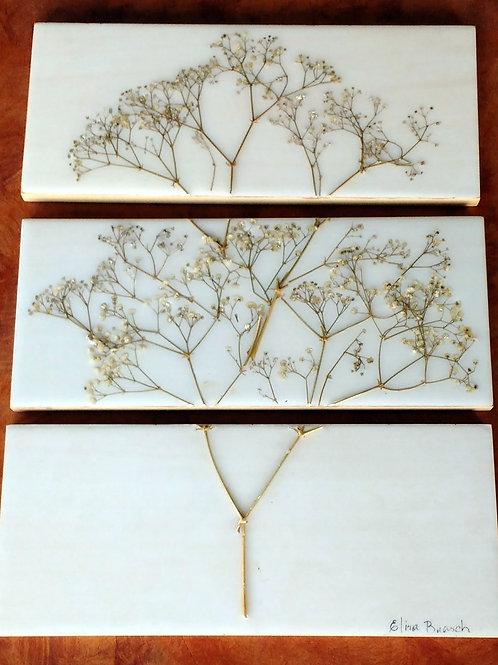 Conjunto 3 pçs. Painel Botânico Mosquitinho - ref 33013