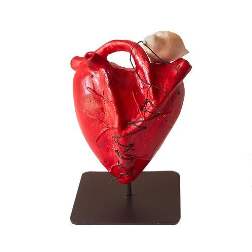 Pássaro costurando Coração