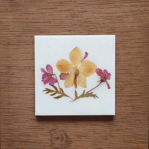 Quadro 19x19 Orquídea - ref18