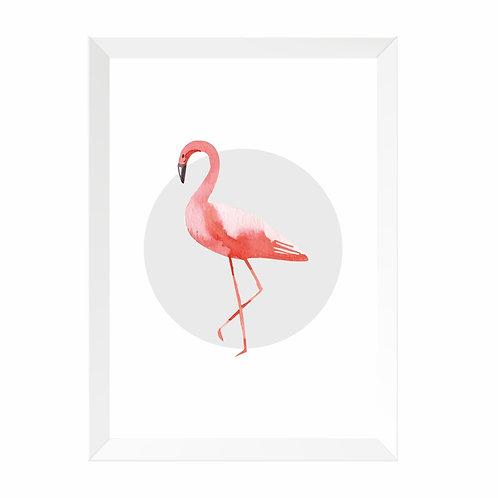 Quadro Flamingo Moldura Branca e Pinus A4