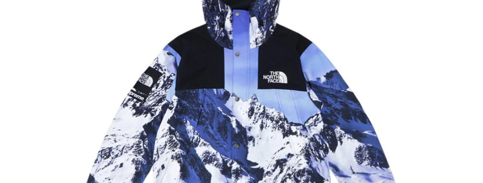 Supreme The North Face Mountain Parka