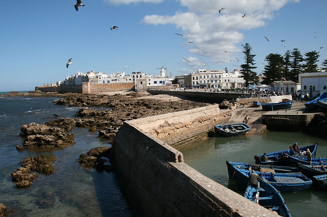Essaouira Explorer - discover the Atlantic Coast of Morocco