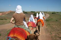 Camel Ride Marrakech (6)