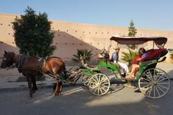 Caleche ride, Marrakech