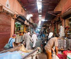 Highlights of Marrakech