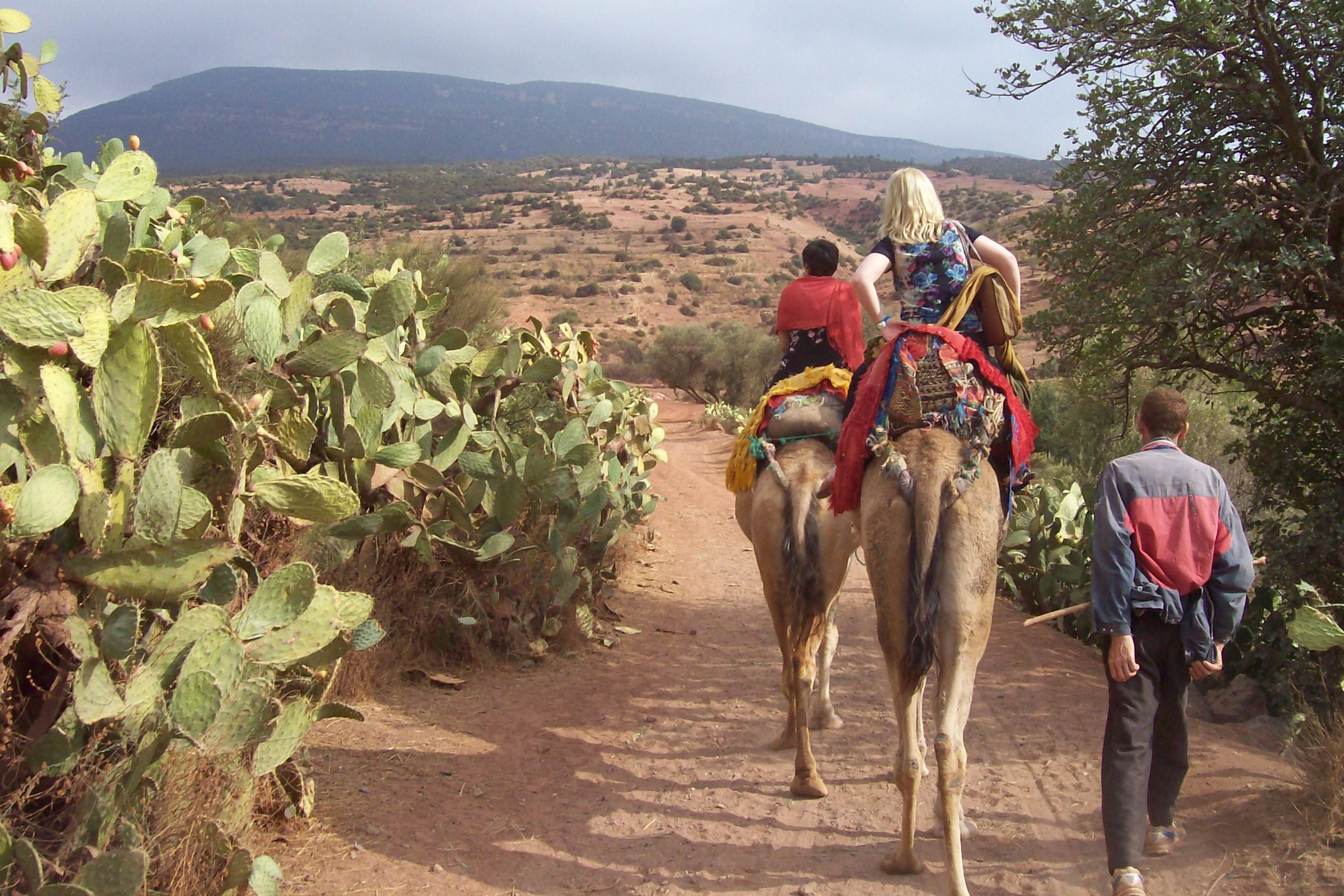 Atlas Camel Trek (10)