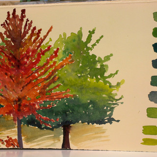Sketch Trees