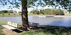 The view at Clarks Pond.