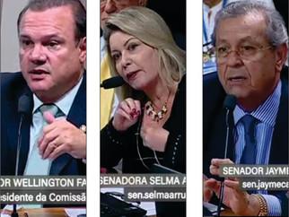 Senadores de Mato Grosso defendem trilhos até Cuiabá