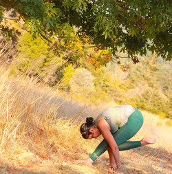 _The nature of yoga is to shine the light of awareness into the darkest corners of the body_ - Jason