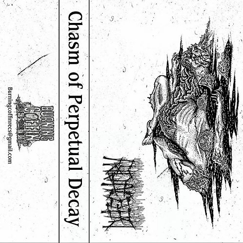 Defecatory - Chasm of Perpetual Decay CS