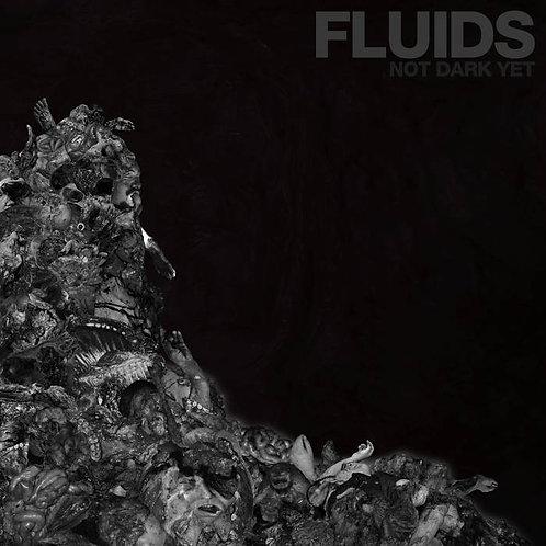 Fluids - Not DarkYet CD