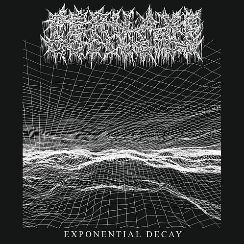 Perilaxe Occlusion - Exponential Decay CS & Patch