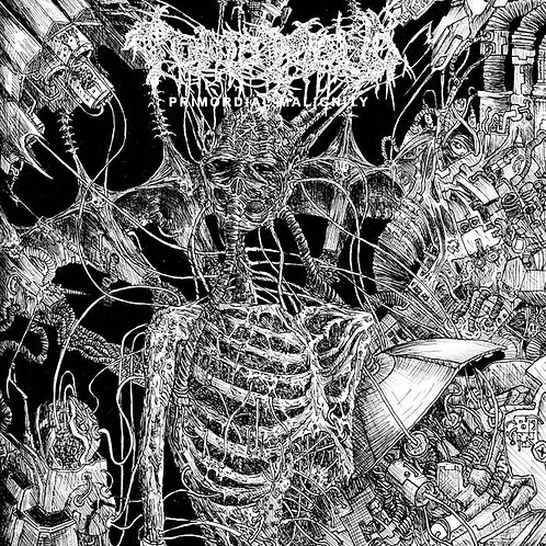 Tomb Mold - Primordial Malignity LP (Yellow Vinyl)