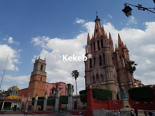 San Miguel más Dolores Hidalgo 1 día Septiembre D 1, S 21