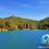 Thumbnail: Presa más Real del Monte más..., 1 Día ¡Respira El Bosque!