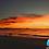 Thumbnail: Bioluminiscencia, 3 días y 2 noches ¡Mágico!
