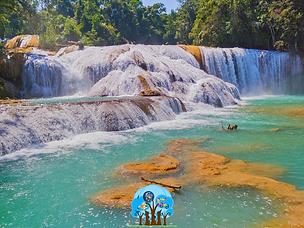 Catálogo Chiapas Básico.PNG