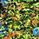 Thumbnail: Monarca, Valle ¡1 día! ¡Camina!