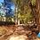Thumbnail: Cascada El Aguacate, 1 día ¡Un paraíso!
