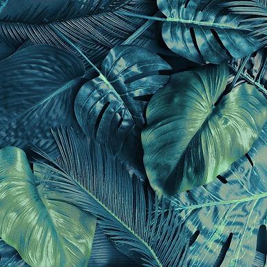leaves2 small.jpg