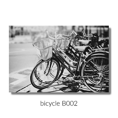 002 bicycle website.png