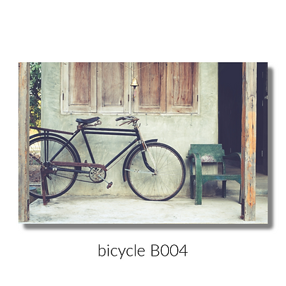 004 bicycle website.png