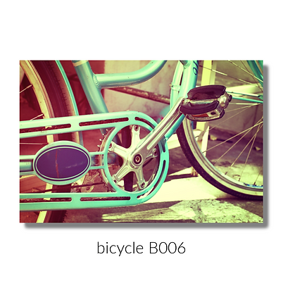 006 bicycle website.png