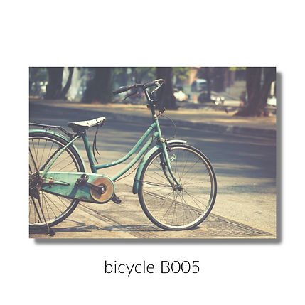 005 bicycle webiste.png
