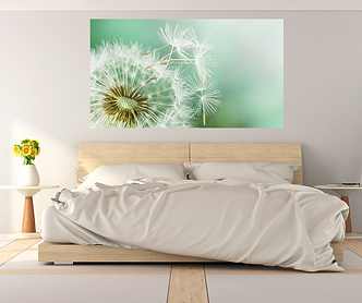 DANDELION COLLAGE small.png